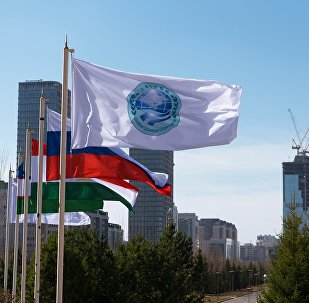 中国-上合地方经贸合作示范区新开工10个项目