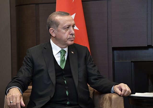 土耳其执政党提名埃尔多安为总统候选人
