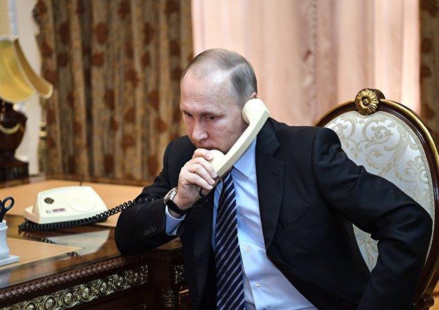克宫:俄土总统通话讨论两国在叙问题上努力的事宜
