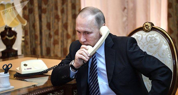 消息人士:普京與埃爾多安通電話討論敘利亞局勢