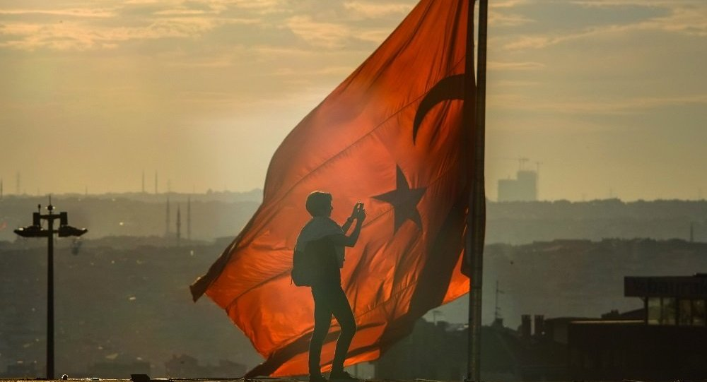 """土耳其内政部已累计拘留650多名在互联网抗议""""橄榄枝行动"""" 者"""
