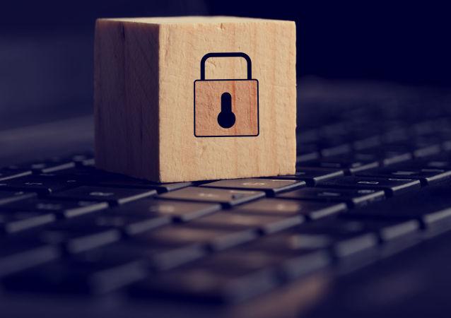 媒體:埃及政府為打擊極端主義蔓延封鎖62個網站