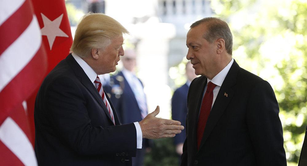 美土總統商定就敘利亞局勢保持密切聯繫