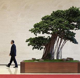 王毅:中方将一如既往做与阿拉伯国家平等相待的真诚伙伴
