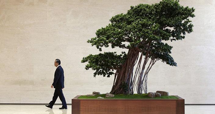 王毅:中方將一如既往做與阿拉伯國家平等相待的真誠夥伴