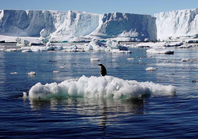 NASA:南极洲东部冰川融化将带来巨大变化