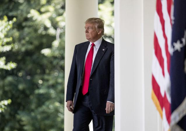 """特朗普呼吁抛开""""政治正确""""而从事安全保障工作"""