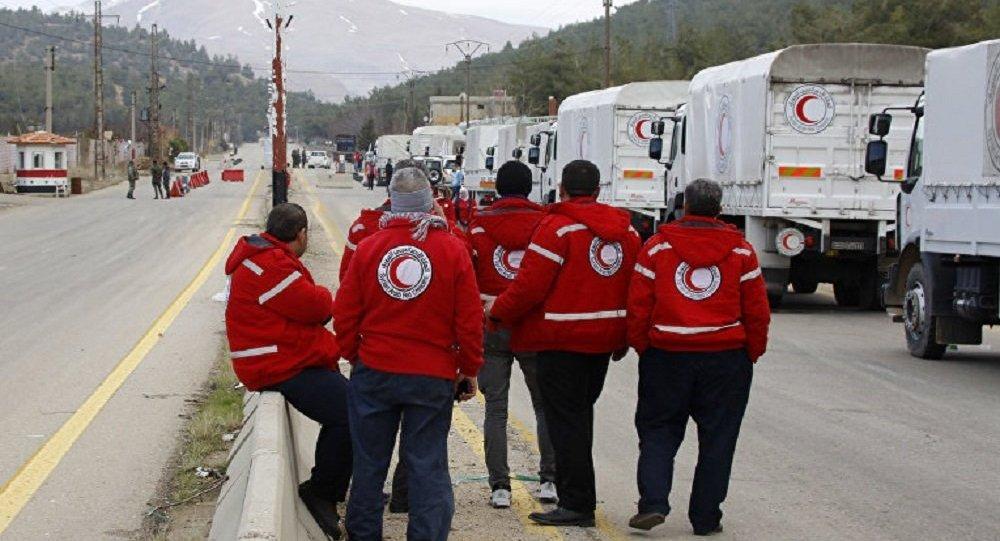 红十字国际委员会:伊拉克和叙利亚死亡平民中的70%是在城市战中被打死的