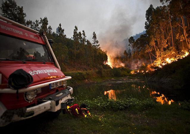 葡萄牙森林火灾