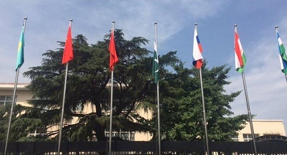 上合组织地区反恐机构:印巴两国执法机构开始参与上合组织工作
