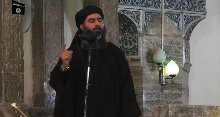 俄外交部:巴格达迪已被消灭的可能性非常大