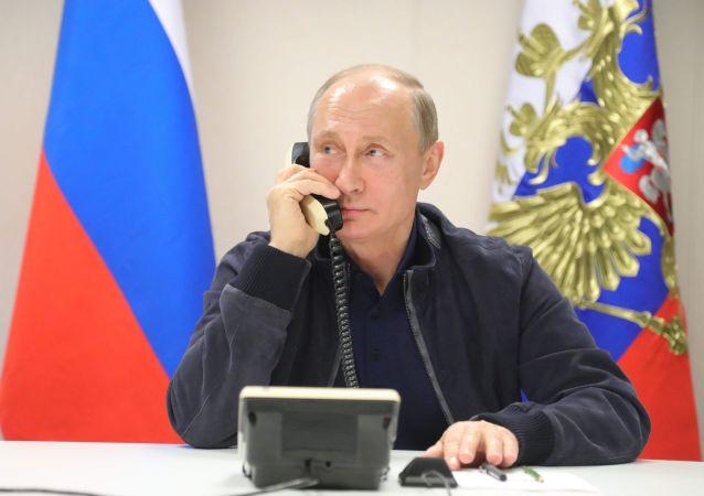 俄印领导人通电话讨论双边关系