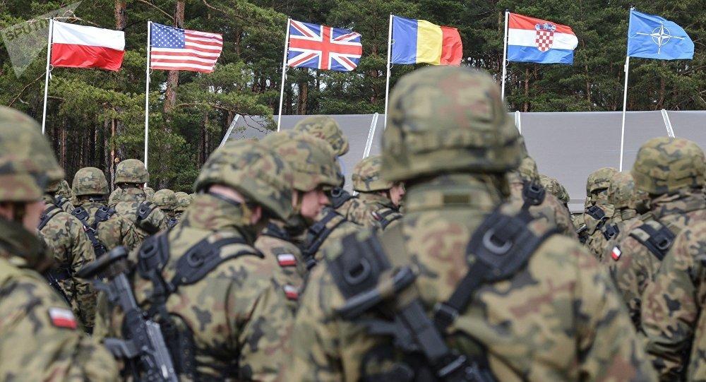 美常驻北约代表:美国对于支持北约无异议