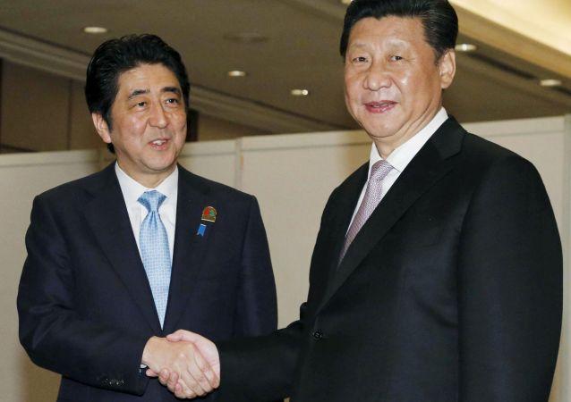 中日领导人在G20峰会上讨论了双边关系 (资料图片)