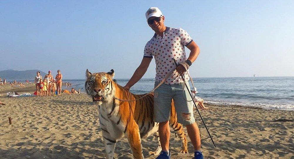 俄纳霍德卡沙滩上有人遛老虎的视频是在拍广告