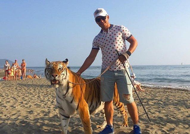 俄納霍德卡沙灘上有人遛老虎的視頻是在拍廣告