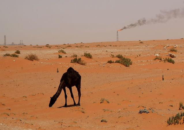 Нефтяные вышки в Саудовской Аравии