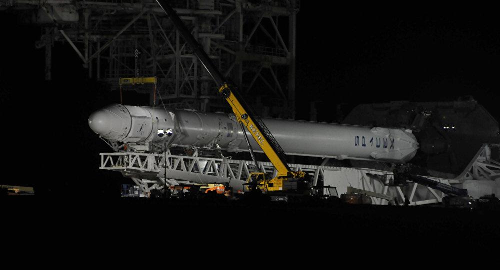 """美国""""猎鹰9号""""火箭因实验用饲料棒变质推迟发射"""