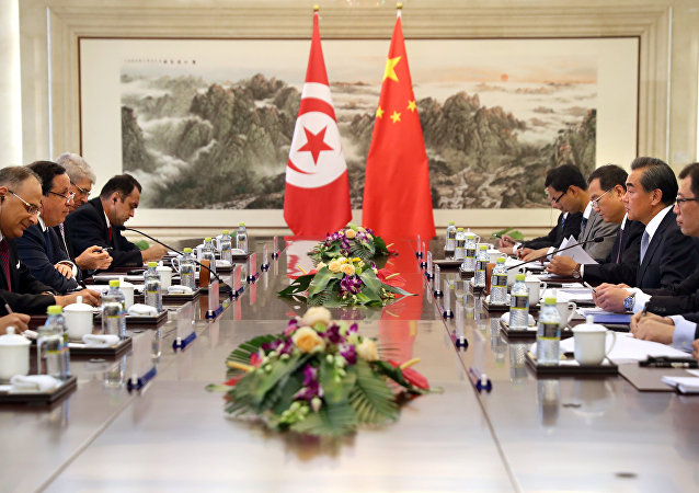 突尼斯外长:国际社会应避免利比亚遭遇分裂的厄运