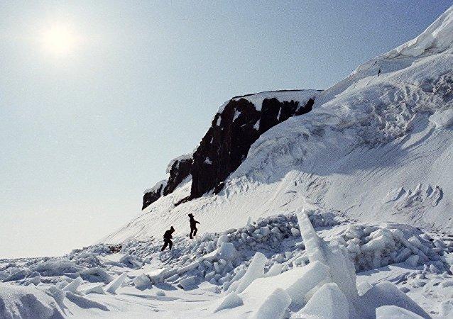 北极弗兰格尔岛