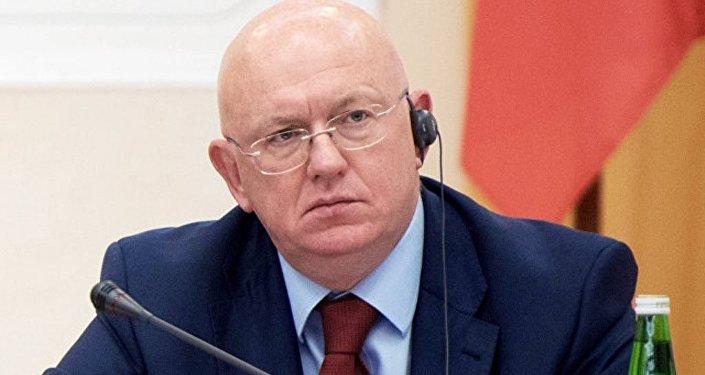 俄罗斯常驻联合国代表涅边贾