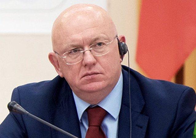 综述:俄罗斯新任常驻联合国代表涅边贾其人