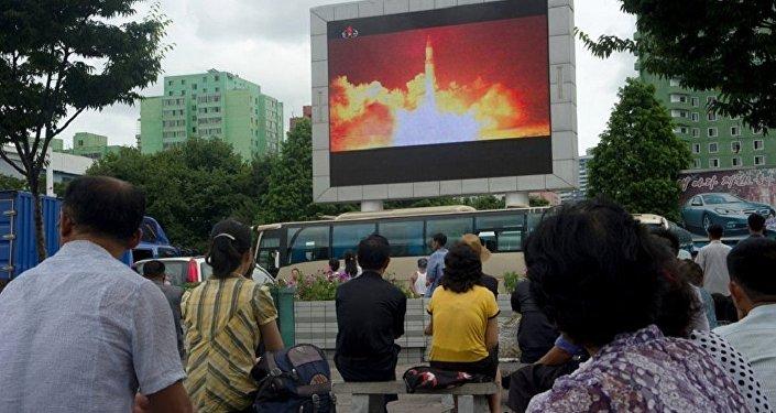 俄驻朝大使称俄方了解朝鲜拥有哪些导弹