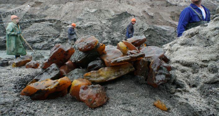 俄加里寧格勒今年將向中國出口360噸琥珀