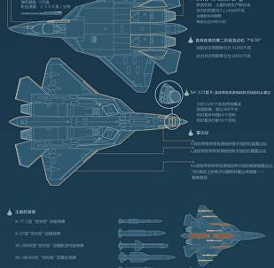 俄罗斯第五代战斗机T-50(PAK FA,前线航空兵前景航空系统)