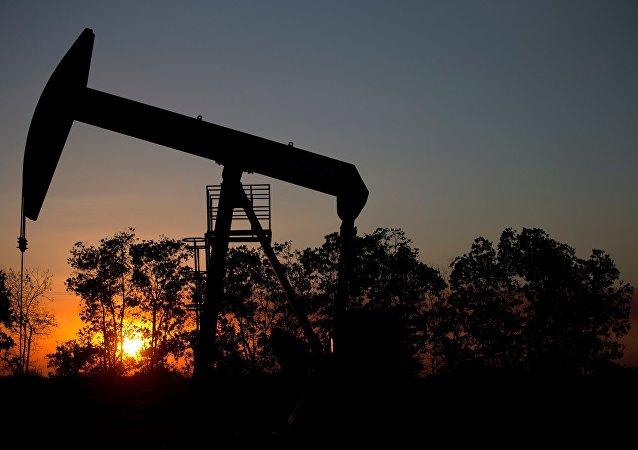 印总理莫迪感谢俄在能源领域给与的支持和投资