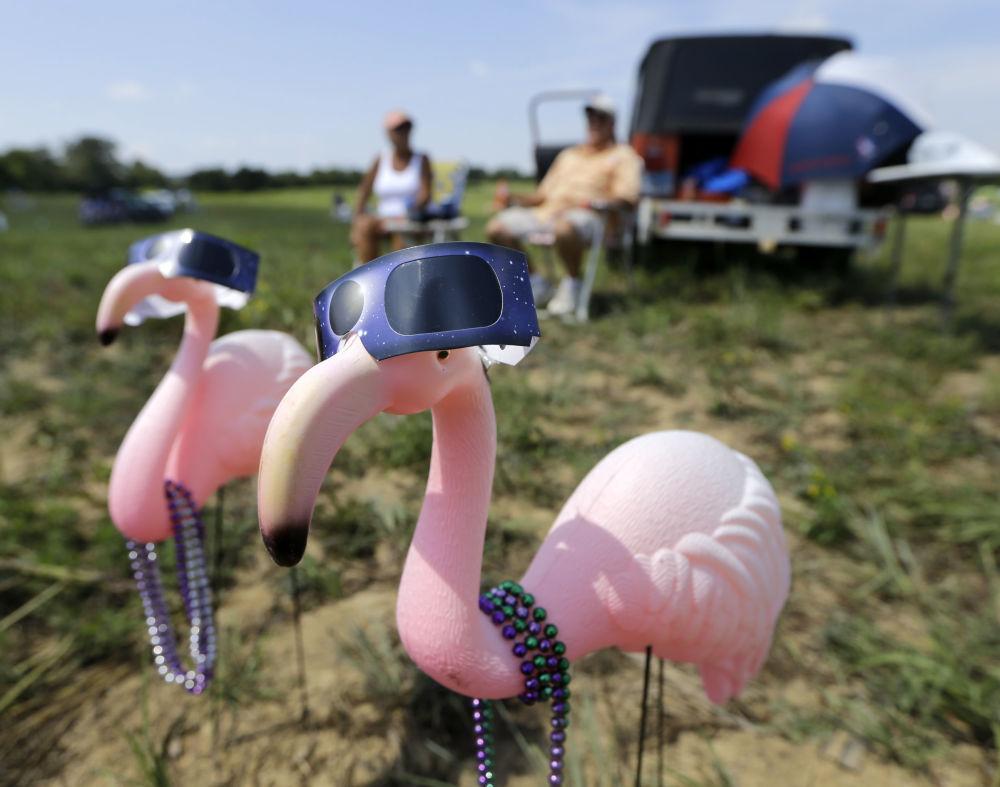 护目镜上的塑料粉红色火烈鸟