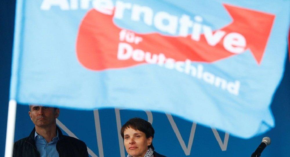 专家:德国选择党或在联邦议院选举中得到1成选票
