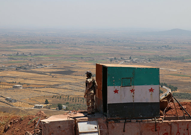 """叙利亚境内的""""伊斯兰国""""已被彻底击败"""