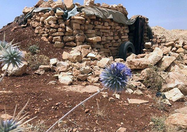 俄国防部:叙泰勒里法特市冲突降级区已在俄协助下设立