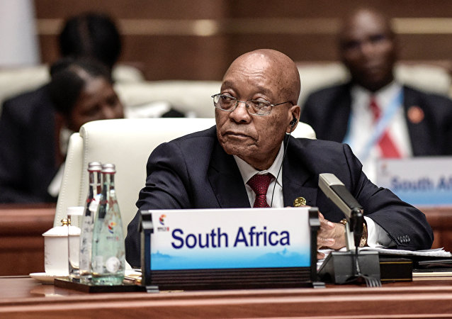普京提议南非总统商讨贸易额下降问题