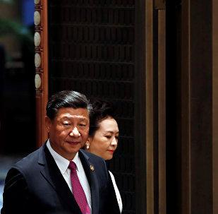 习近平:金砖国家计划深化政治安全合作