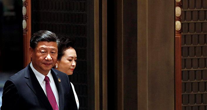 習近平:金磚國家計劃深化政治安全合作