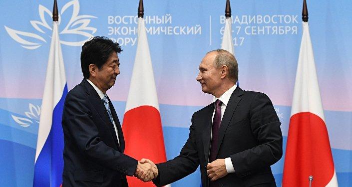 普京谈同日本的和平条约:继续耐心寻找问题的解决方案很重要