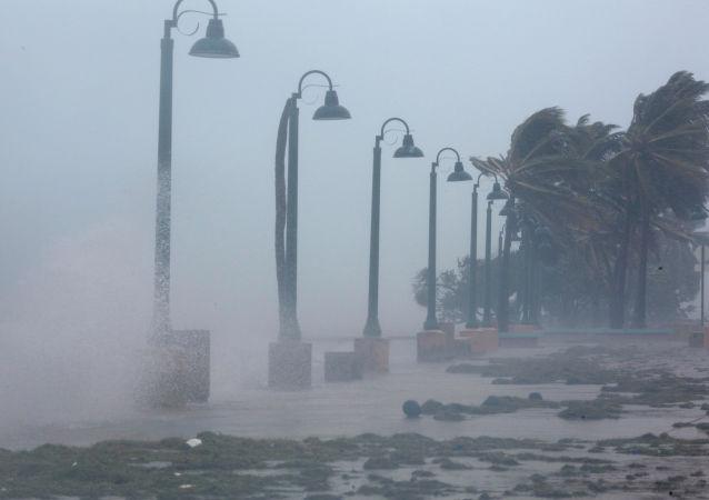 """飓风""""伊尔玛"""""""