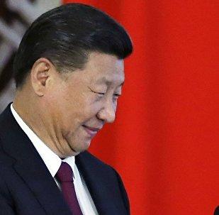 普京與習近平將在金磚國家會晤期間舉行雙邊會面