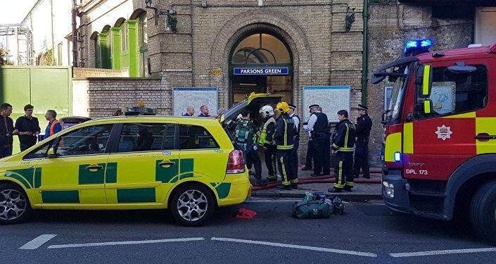 媒體:倫敦地鐵恐襲案嫌疑人或是敘伊難民
