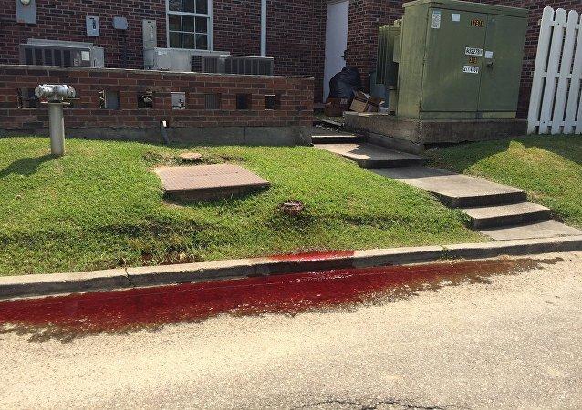 美国巴吞鲁日街头鲜血遍地