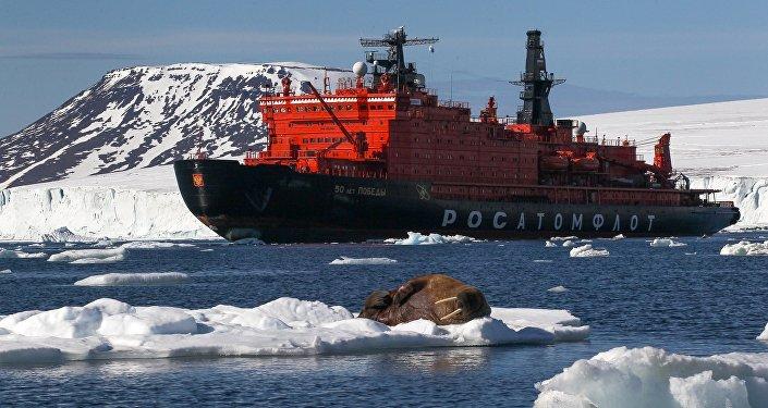 美媒:美国已在北极竞争中落后于俄罗斯