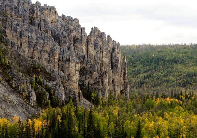 俄「豹之鄉」國家公園向遊客推出袖珍版植物圖鑒