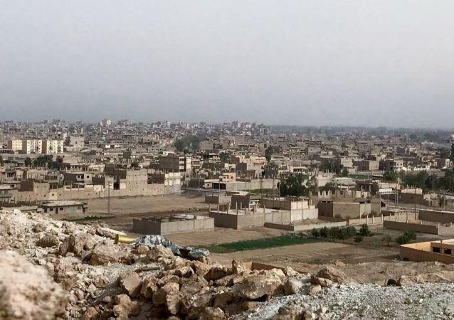 """""""美国军事代表团""""区域内的伊斯兰国组织恐怖分子袭击了叙利亚政府军"""