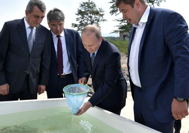 俄专家:普京责成3年内清除贝加尔湖沿岸废物的工作或要用数十年