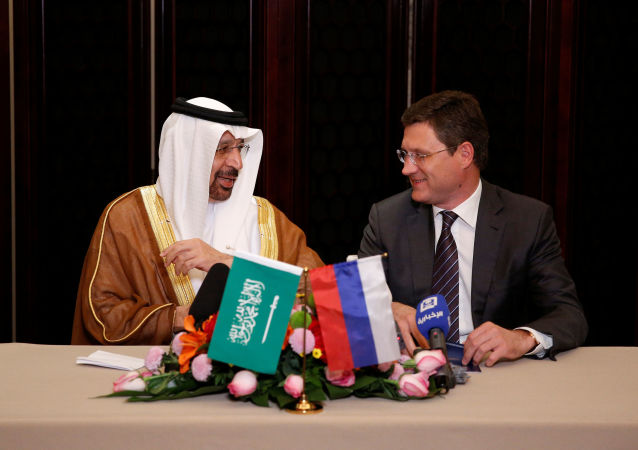 俄能源部長:俄沙兩國在審議25個聯合投資項目