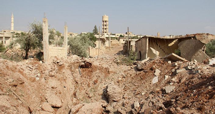 俄羅斯和埃及達成共識將為實現敘利亞的政治調解加強協調