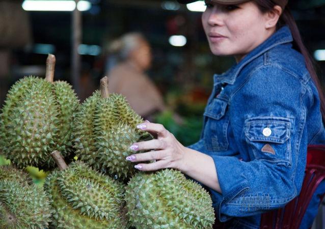 美国女子走遍亚洲12国探寻最美味榴莲