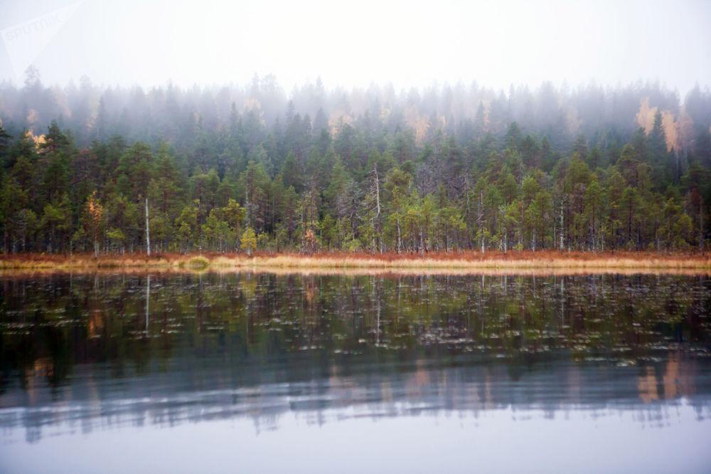 俄罗斯卡累利阿共和国苏奥耶尔维区的托尔沃耶尔维湖
